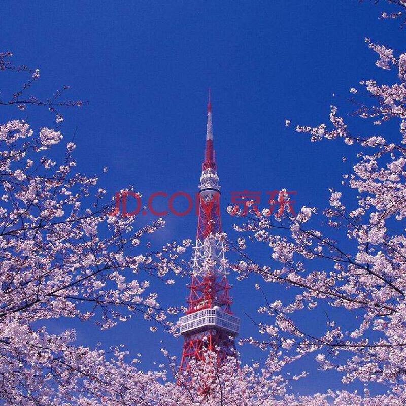 ¥1675 中国国航 北京/天津-日本东京/大阪 3-30天往返含税机票